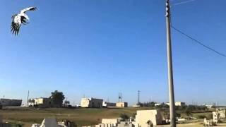 Сирия! Новое видео пролета Российской крылатой ракеты