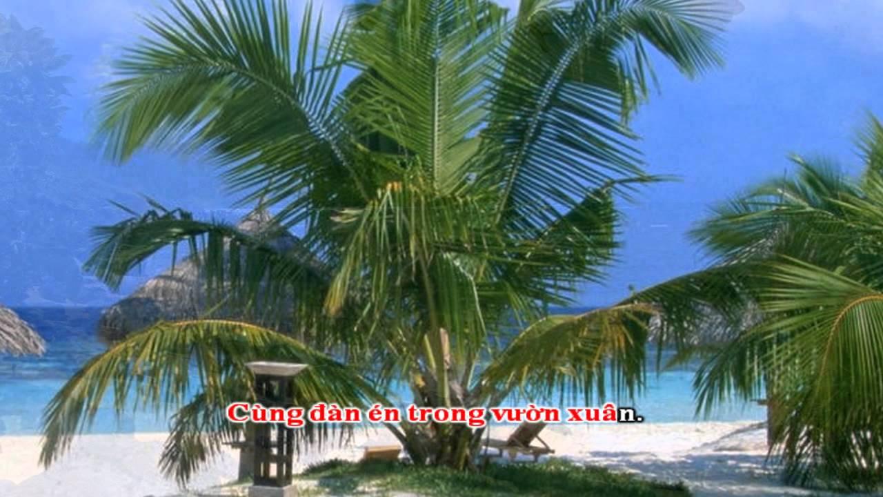 Người Đến Từ Chiều Châu - Quang Linh