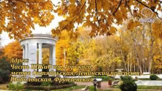 Куда сходить в Москве? Тайные места Москвы (часть 3) | Квесты в Москве