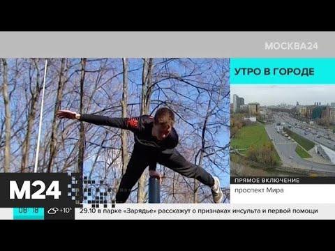 В зеленых зонах Москвы с начала года появилось более 160 спортивных площадок - Москва 24