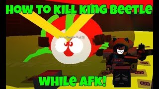How to kill King Beetle Easily ( While Afk )   Roblox BSS