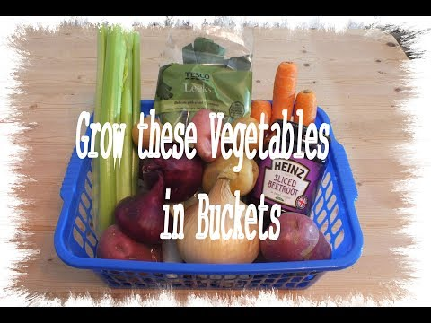 HGV Grow Vegetables  The easy way to decide what to grow. Start to finish