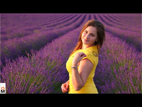 Франция. Прованс. Лаванда... Моя Мечта Сбылась:)|  Lavender