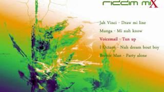 Young Money Riddim Mix [February 2011]