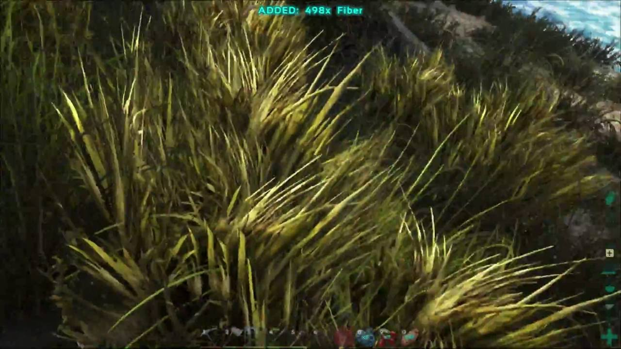 How To Get Lots Of Fibers Ark Survival Evolved Youtube