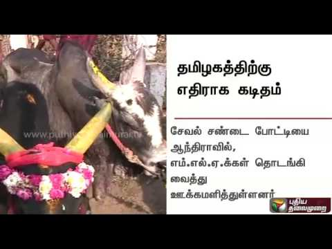 Animal Welfare Board threatens action against Tamil Nadu if jallikattu is held | Details