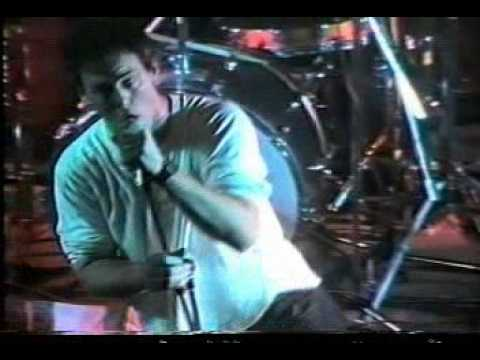 bad-religion---1000-more-fools-(along-the-way-video-dvd)
