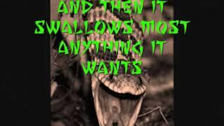 Monkey Grinder Lyrics