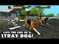 🐶Stray Dog Simulator-Симулятор бродячих Cобак- By Gluten Free games Classic-IOS/Android