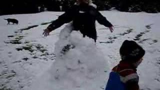 Auntie Jan The Snowman