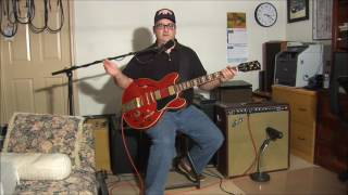 "3 Meet the Guitars Gibson Memphis ES 345 ""Ann"""