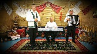 Nelu Bitina si Nicusor Troncea Colaj LIVE Muzica de Petrecere la Dulce i graiul de folclor