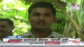Rupesh Narute banana farming success story
