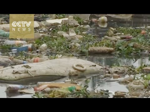 2016 Rio Olympics:  Rio Water Quality Remains Poor