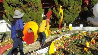 TheDinhFamily - Gia đình đi chùa Đài loan - Mùng hai tết 2017 Đinh Dậu P6