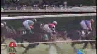 2008/02/17 きさらぎ賞 (Jpn3) レンボーペガサス