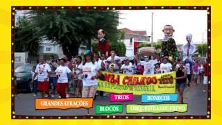 CARNAVAL DE SALGUEIRO-PE 2015 (03)