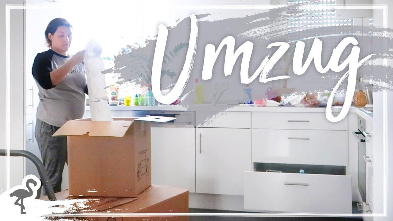 Umzug Kisten Packen Einzug In Die Neue Wohnung Nurwasichmag