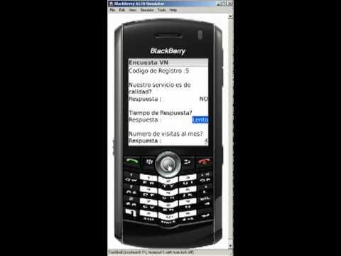 Encuesta VN - Simulación Blackberry Pearl 8110