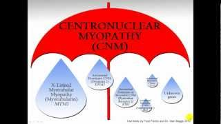 Centronuclear Myopathy: Umbrella term for CNM