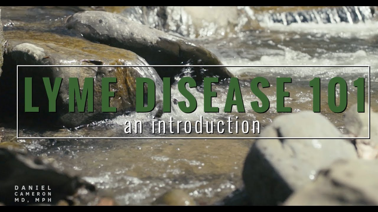 Lyme Disease Videos - Lyme Disease 101: An Introduction