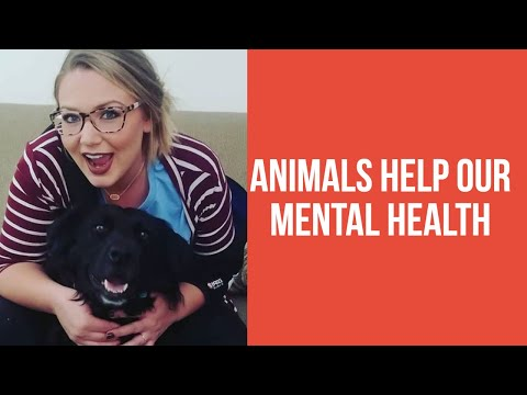 ANIMALS HELP OUR MENTAL HEALTH