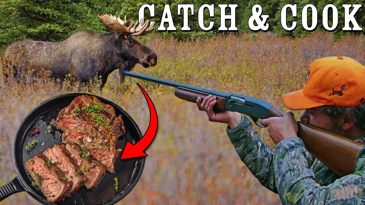 Catch and Cook Moose in Northern Maine