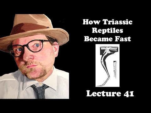 Lecture 41 How Triassic Reptiles Became Fast