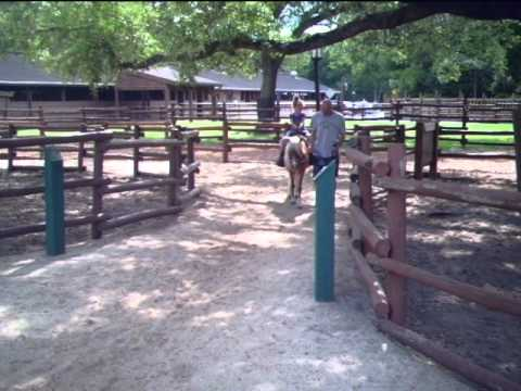 Trinity St.Pierre riding Ely the pony at Disney's Fort Wilderness Triple D Ranch
