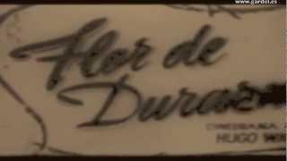 FLOR DE DURAZNO. Primer film de Carlos Gardel. 1917. Película Muda.