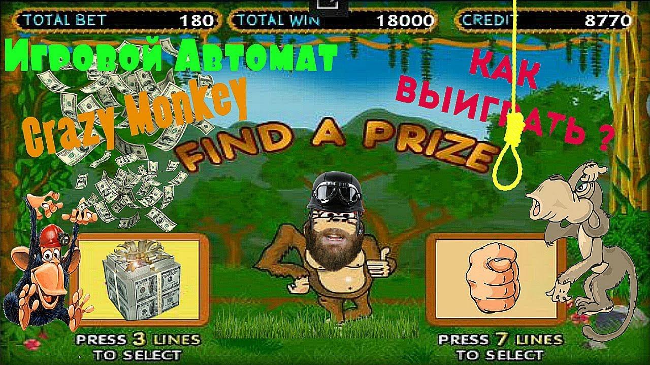 Как Выиграть в Игровой Слот Обезьянки|Crazy Monkey.Зачётные Плюшки от  Онлайн Клуба Вулкан Гранд » awa-center