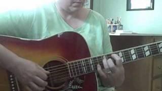1973 Lyle W-460 Acoustic Guitar