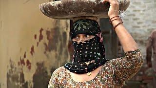 Невест в Индии не хватает из-за абортов (новости)(http://ntdtv.ru/ Невест в Индии не хватает из-за абортов. Садхурам Бервал – один из многих в северном индийском..., 2015-09-11T15:11:33.000Z)