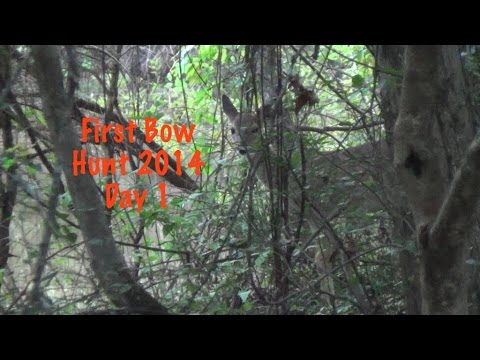 First Bow Hunt 2014 Day 1