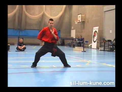 Kian Shakouri performing Sam Chin Kuen at BCCMA British Champs 2011