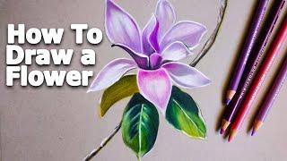 Çiçek Nasıl Çizilir | How To Draw A Flower | Prismacolor | Çizim