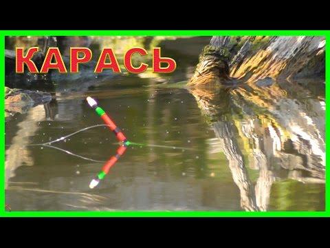 Рыбалка на озере. Ловля карася на поплавок. Поплавочная удочка. FISHING