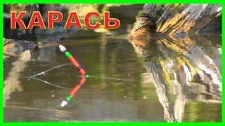 Рыбалка на озере. Ловля карася на поплавок. Поплавочная удочка. FISHING(Рыбалка на озере. Ловля карася на поплавок. Поплавочная удочка. FISHING.….((Мой канал- это (в основном) канал..., 2016-08-10T13:31:20.000Z)