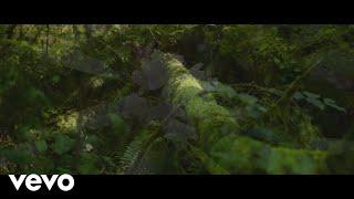 Смотреть клип Scotty Mccreery - Carolina To Me