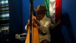 メキシコ民謡 アルパで弾き語り