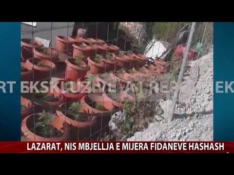 A1 Report - Edicioni i Lajmeve, 24 Maj 2014 - Albania News