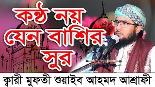 Download lagu কন ঠ নয য ন ব শ র স র Bangla Waz 2018 Shuaeb Ahmed Ashrafi MP3