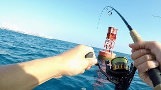 The TRICKIEST Saltwater Fish I've Ever Caught!! (ft. BlacktipH)