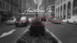 "DMC x David GAERIS - ""Amintirea Ta"" (Lyrics Video)"