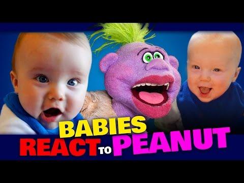 BABIES REACT to PEANUT | JEFF DUNHAM