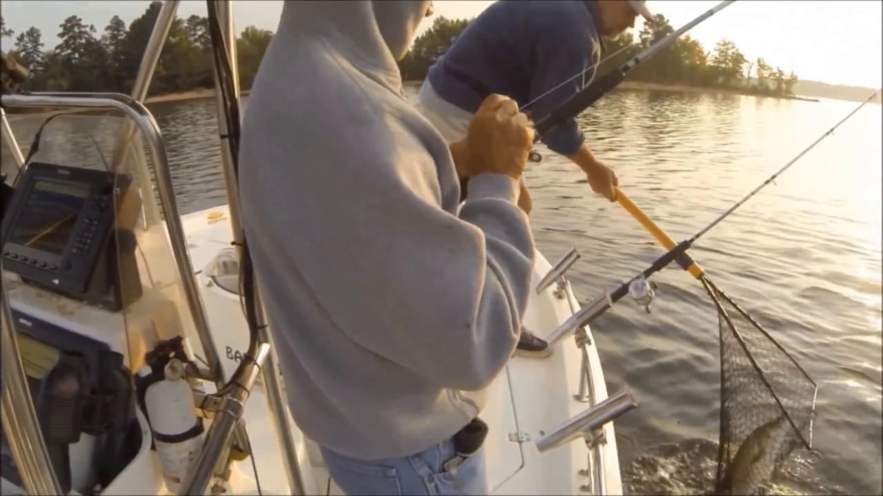 Kerr lake stripers freshwater striped bass simrad nss for Lake gaston fishing