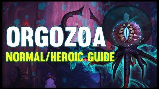 Orgozoa Normal + Heroic Guide - FATBOSS