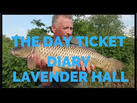 THE DAY TICKET DIARY LAVENDER HALL FISHERY *CARP FISHING*