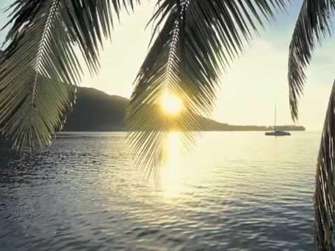 Aswad VS. The Rhythm Riders - Under Palm Trees - YouTube