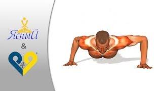 Отжимания по спартански. Упражнение для тренировки плеч и грудных мышц